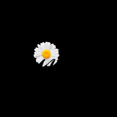 Daisy Dukes Promo_Logo